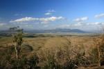 "The Bluff – Wandern in den ""Victorian Alps"""