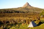 7 Tage Overland Track auf Tasmanien (Tag 4)