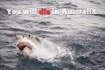 Australien in den deutschen Medien: nichts als Klischees und Stereotypen