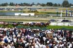 Melbourne Cup – ein Pferderennen bringt das Land zum Stillstand