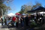 Es ist Markttag! Die schönsten Märkte Sydneys